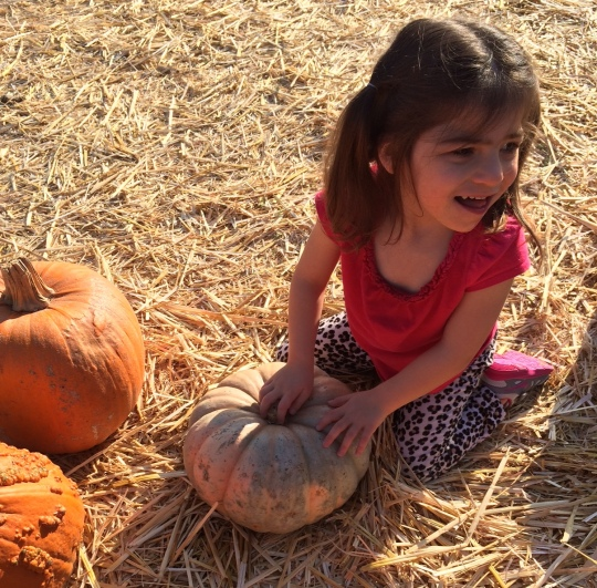 emma pumpkin patch